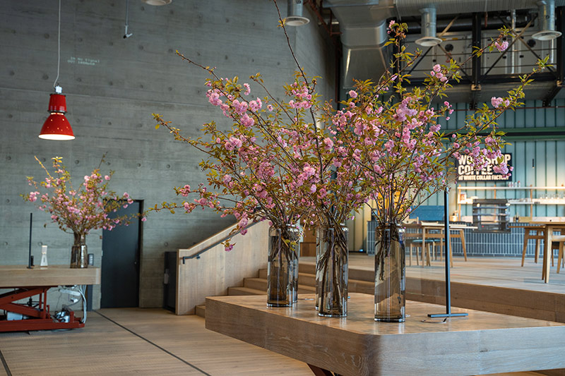 Petal to the Metal Flowers - Cheery Blossom - Derwent Building London